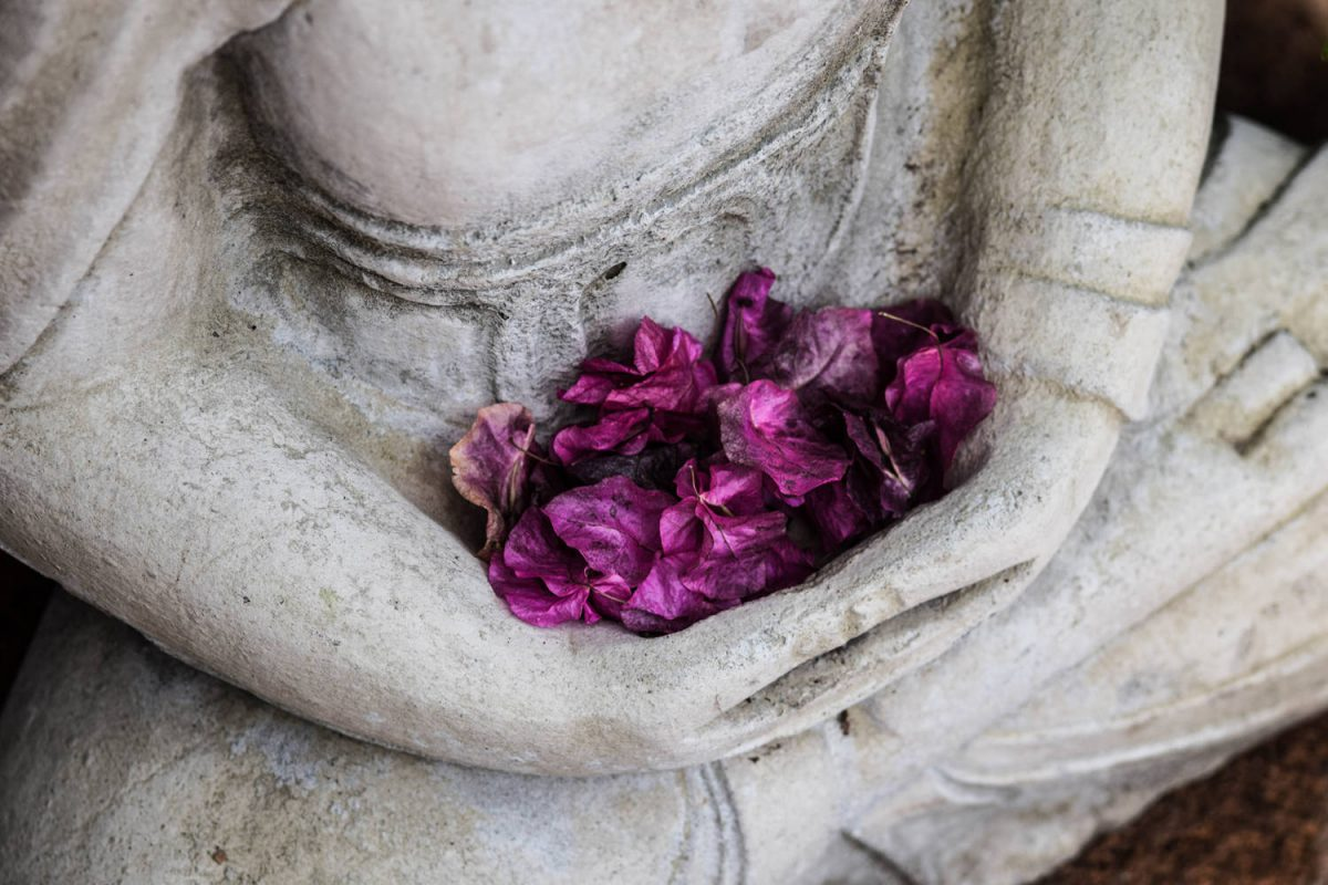 YOGAを伝えることで見えてきた仏教との共通性 PART1