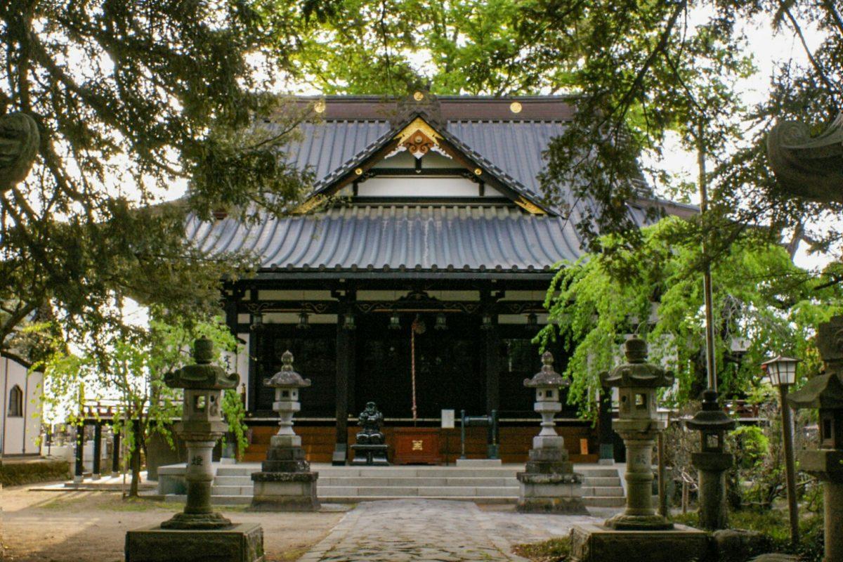 ご利益寺を巡ろう!子授け祈願・安産祈願で有名な定林寺の歴史と魅力をご住職に聞きました