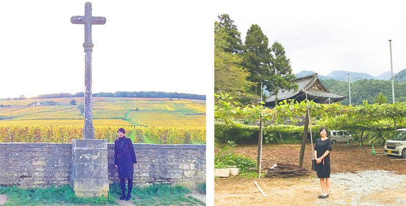 ワインは修道院だけでなくお寺からも生まれていた!前編
